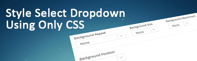 How To Style HTML Select Dropdown Using Only CSS – PRoy's Blog