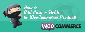 How to Add Custom Field to WooCommerce Products 300x113 - How to Add WooCommerce Custom Fields to Products
